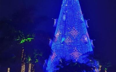 Pacto Niterói Contra Violência deseja um Natal de Paz!